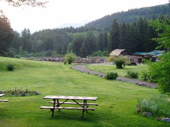 Mountain Sky Guest Ranch: View from Lodge