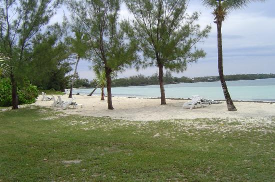 Bluff House Beach Resort & Marina: Bluff House Beach