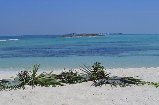 Green Turtle Cay : One of the beaches