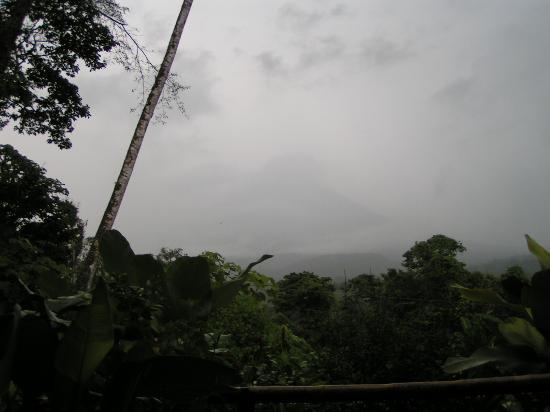 Lost Iguana Resort & Spa: Like a scene out of Jurassic Park