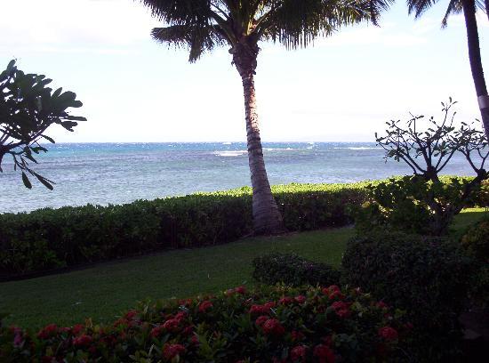 Фотография Island Sands Resort