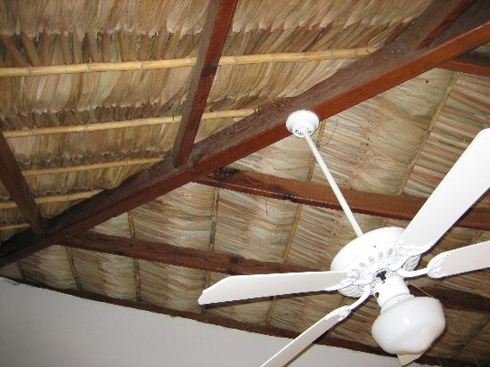 The Bungalows Hotel: Palapa Roof!