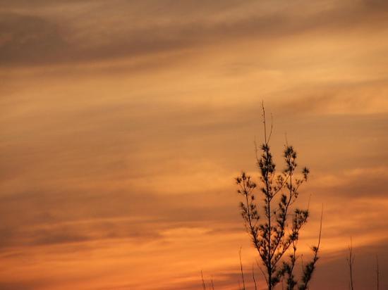 Sunset over the Island Seas