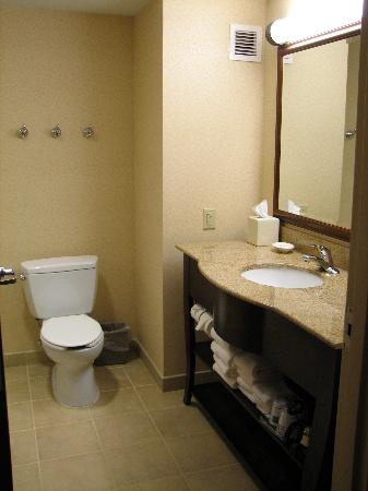Hampton Inn & Suites Frederick-Fort Detrick: Bathroom