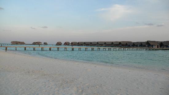 COMO Cocoa Island: -