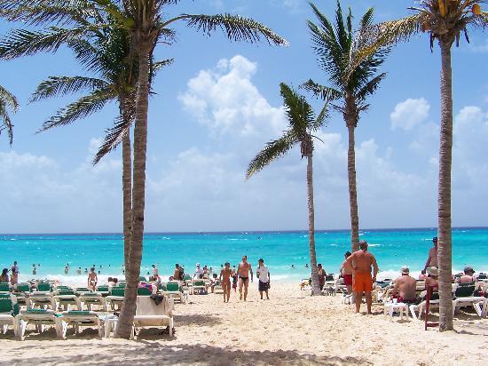 Hotel Riu Tequila Amazing Beach Playacar