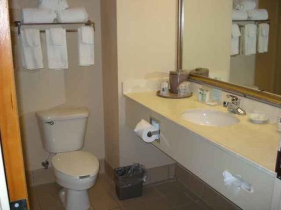 Hampton Inn New Albany: Clean bathroom