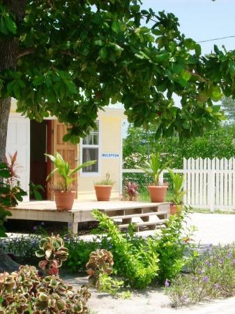 Royal Caribbean Resort: Reception