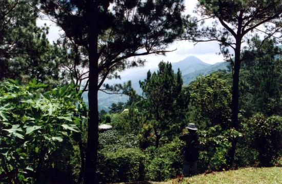 San Juan de la Maguana, Dominican Republic: Finca Altagracia
