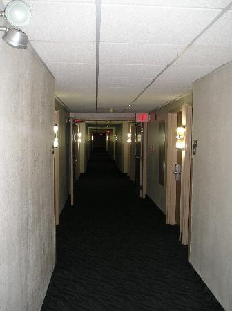 Motel 6 Newport: Corridor