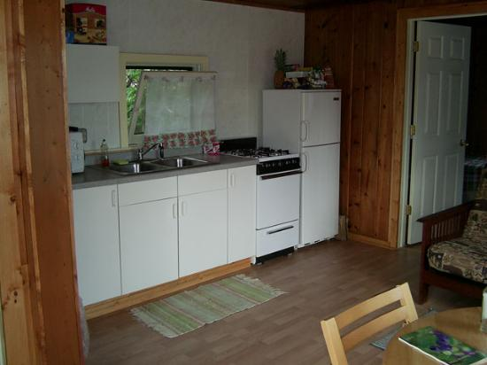Lady Bug Lodge : Picture of the kitchen in our cabin