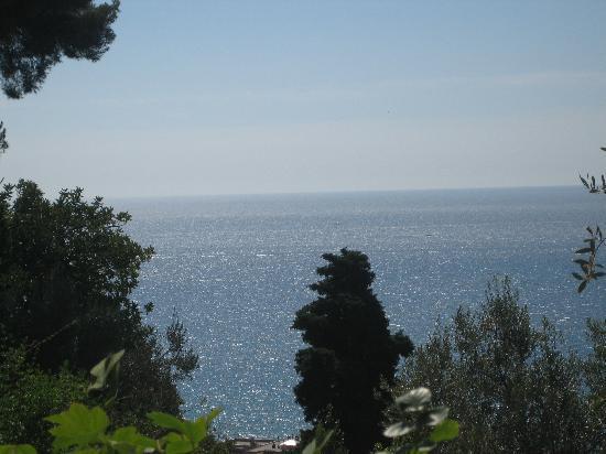 Villa della Pergola: This was the view from our balcony!