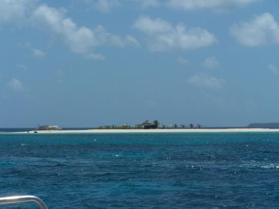 Simpson Körfezi, St-Martin / St Maarten: angulla snorkle area