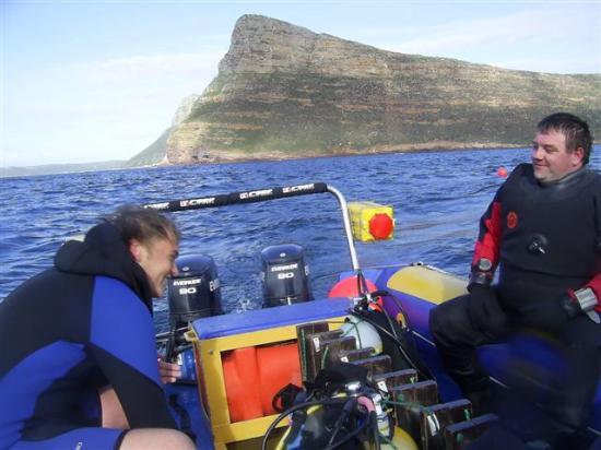 Waldorf Suites Sandton : Diving at Cape Town