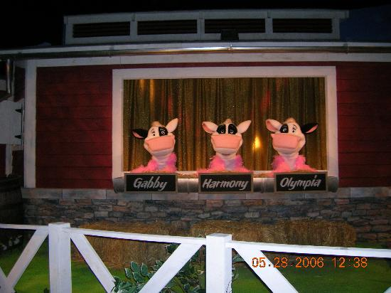 Hershey's Chocolate World: 3 cows in the chocolate tour