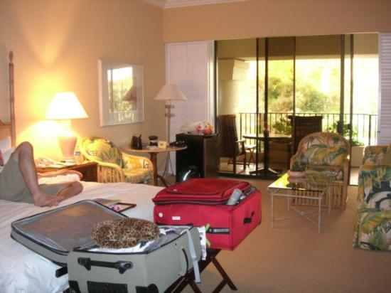 Four Seasons: Moutainside Room - Soon to be redone