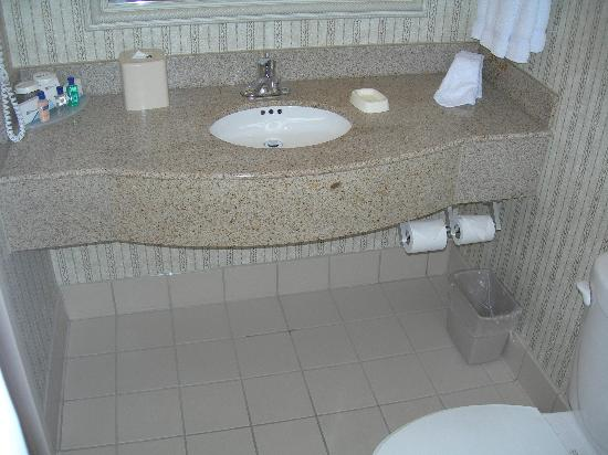 Hilton Garden Inn Toronto/Mississauga : Standard HGI bathroom, very clean.