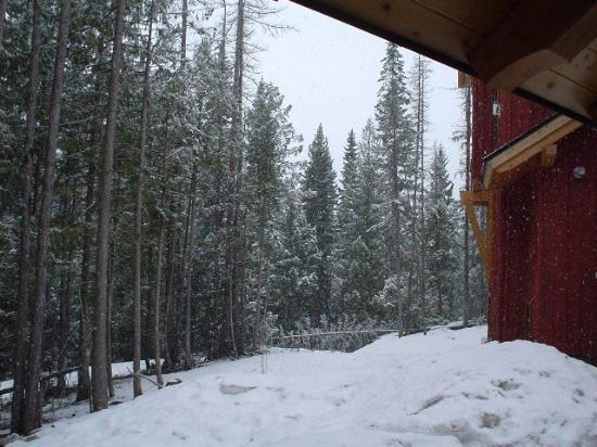 Bear Paw Lodge Studio Bach 2: View from the private hot tub