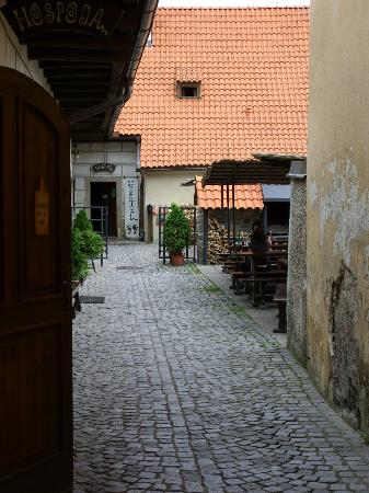 Hostel 99 - Front entry & terrace
