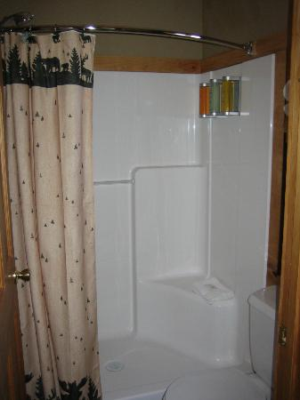 Carson Ridge Luxury Cabins: Shower