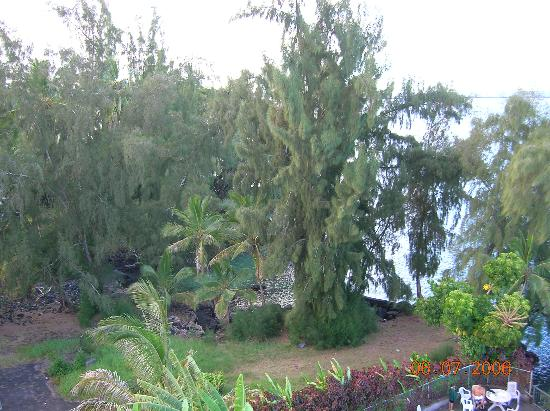 Country Club Hawaii Condo Hotel: off balc. looking left, cove with swing rope
