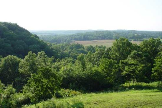 Steelville, MO: View of the Ozark mountains from the back of the lodge
