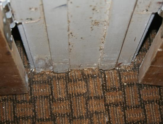 Stargazer Inn and Suites: This is a shot of the floor/door