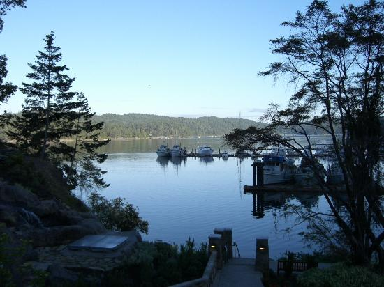 Pender Island, Canada: The view at dawn