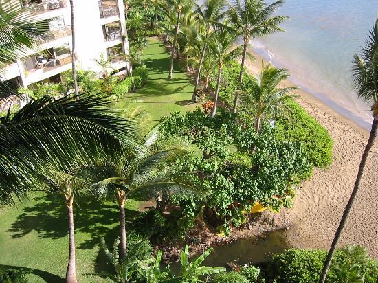 Valley Isle Resort: View from front door