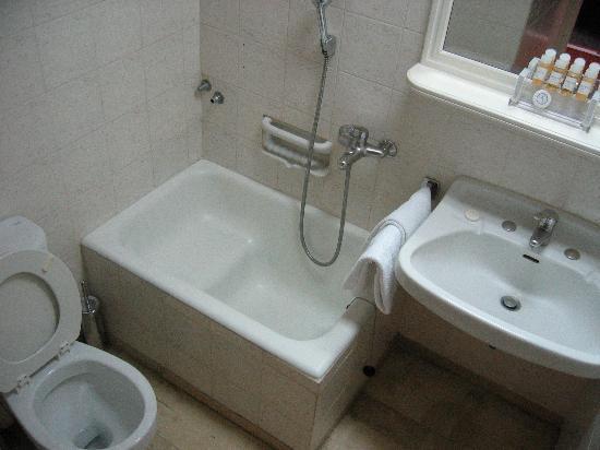 Adrian Hotel: The famous half bath (rm 302)