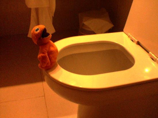Protur Safari Park Aparthotel: view from the toilet