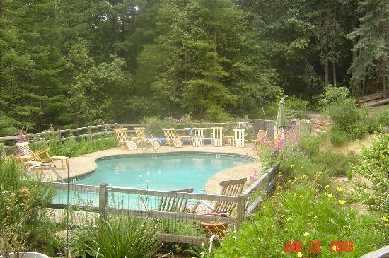 Huckleberry Springs: Pool by lodge