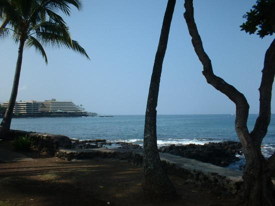 Kona Billfisher: The ocean across the street