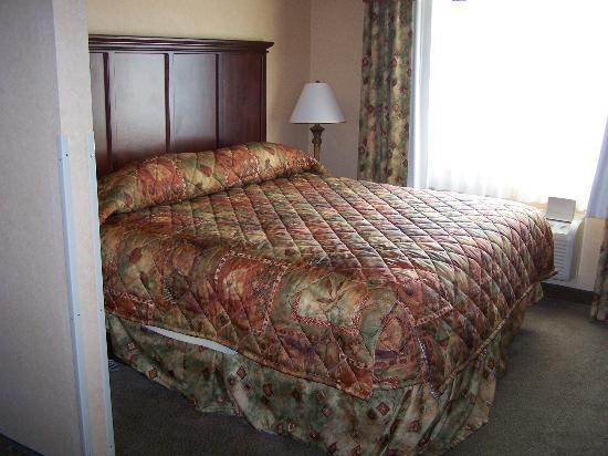Comfort Suites Columbia: Bedroom area