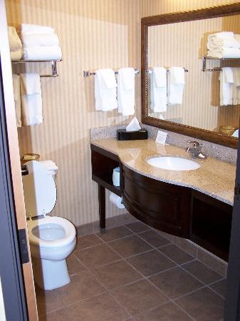 Comfort Suites Columbia : bathroom