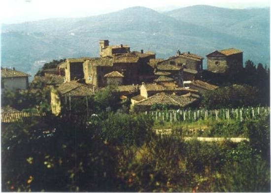 Radda in Chianti, Włochy: Volpaia