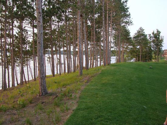 Northern Bay Resort: landscaping along lake