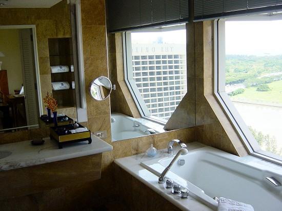 The Ritz-Carlton, Millenia Singapore: The famous view bath