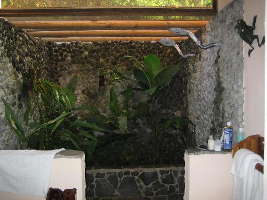 Lost Iguana Resort & Spa: Shower room with screened opened ceiling
