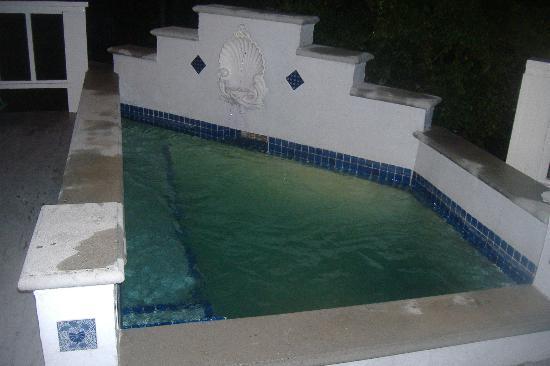 Cari-Beana Villa: plunge pool