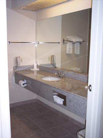 Comfort Suites Westchase: The sink in the bathroom