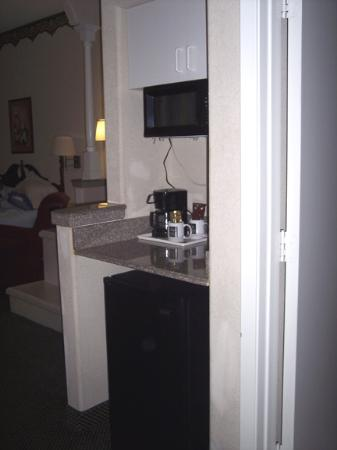 Comfort Suites Westchase: The fridge and microwave in our room
