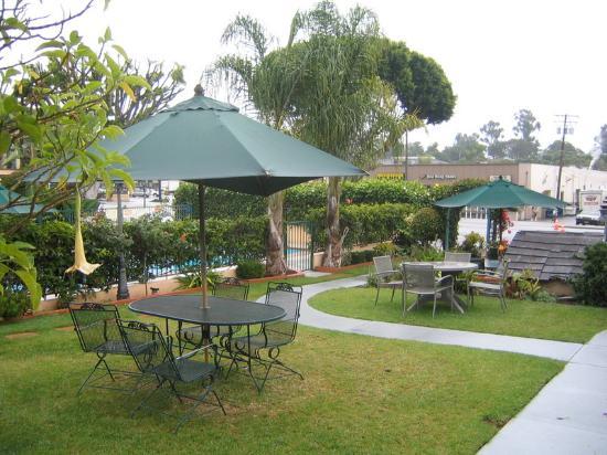 Oasis Inn & Suites: Pool area