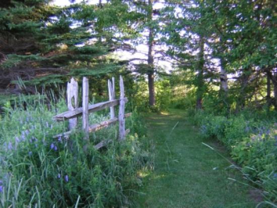 Clark's Sunny Isle Motel: Walking Trail