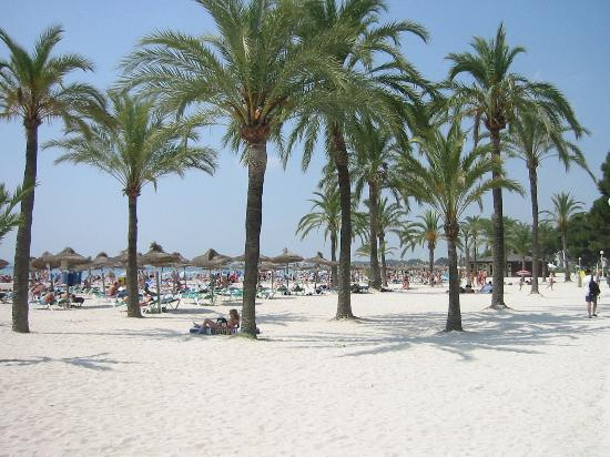 Lagoon Center: Alcudia Beach