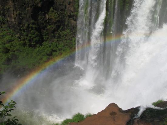 Iguazu Grand Resort, Spa & Casino: Just beautiful view