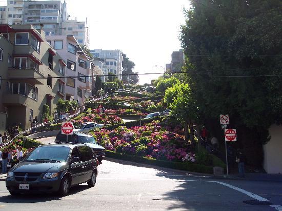 Lombard street picture of nob hill motor inn san for Royal pacific motor inn san francisco ca 94133