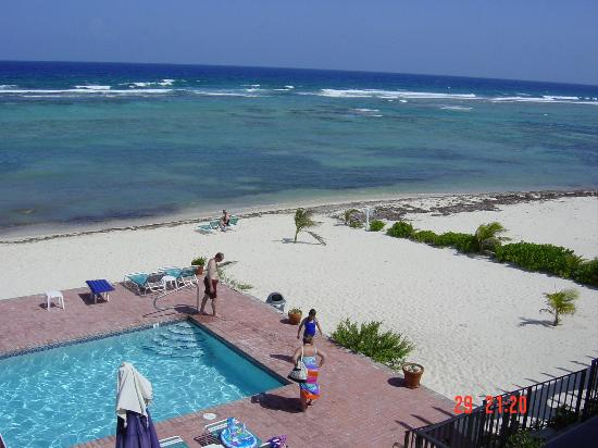 Turtle Nest Inn: View from the appartment
