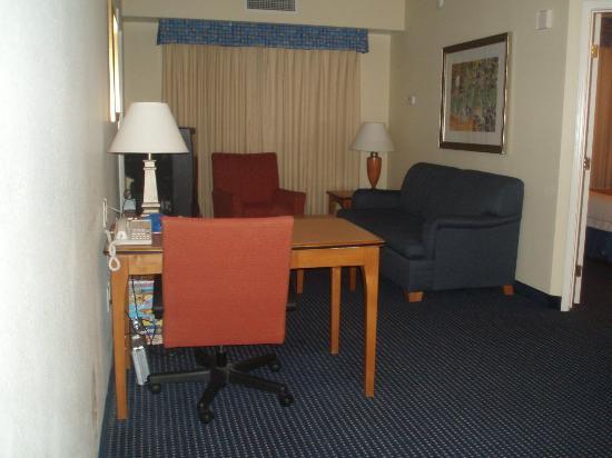 Residence Inn Anaheim Resort Area/Garden Grove: Living room