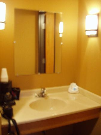 Prairie Inn and Suites: sink vanity
